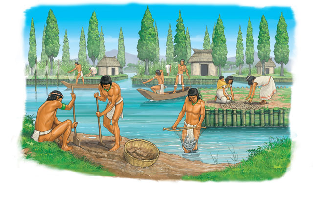 What Were Chinampas Chinampas Were Floating Market Gardens Made By The Aztec